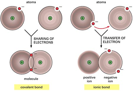 covalent and ionic bond